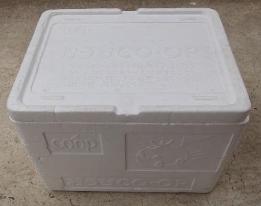 生協の保冷箱(大)