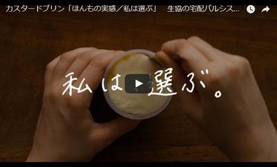 カスタードプリンyoutube(小)