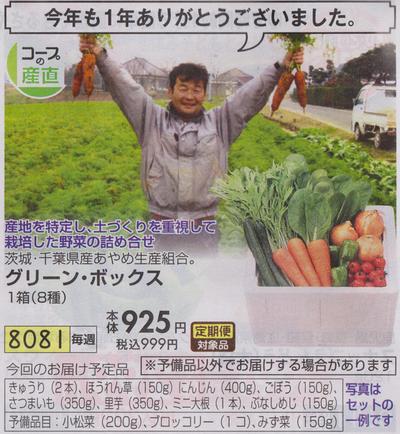 おうちコープグリーンボックス2016125(小)
