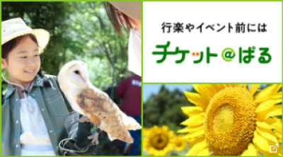 チケット@ぱる バナー